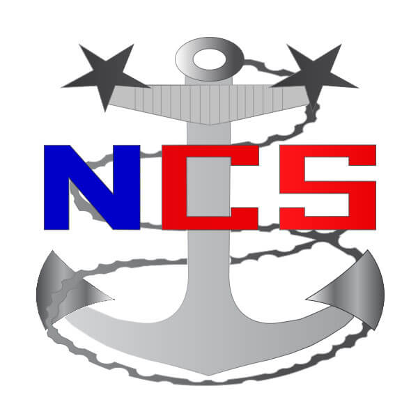 Navy Cyberspace anchor logo