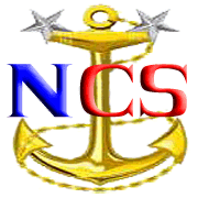 Navy Cyberspace logo